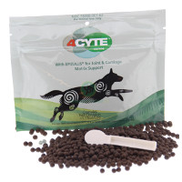 4Cyte Canine Joint Support