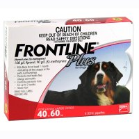 Frontline Plus Extra Large Dog 40 to 60kg (Red) 6 pack