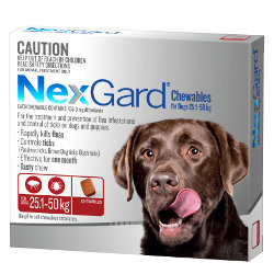 NexGard Flea and Tick Chews for Dogs 25 to 50kg (Red)
