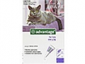 Advantage Large Cat - Over 4kg (Purple) - 4 pack