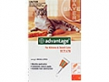 Advantage Small Cat - Up to 4kg (Orange) - 4 pack